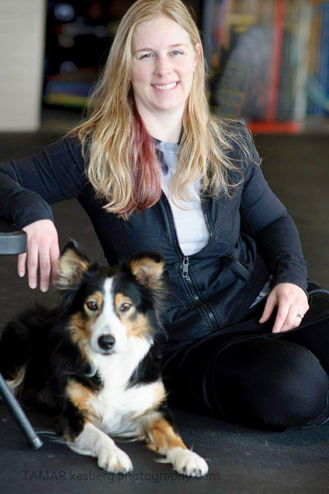 Sit Happens Dog Training Center Missoula Sit Happens Dog